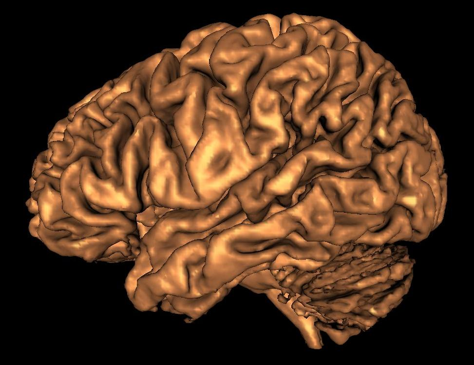 how to stimulate my brain to study