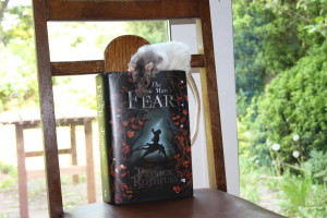 Wise Rat's Fear