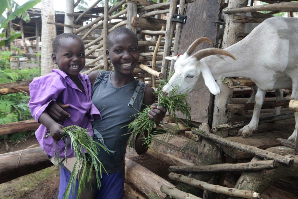 Buwamdelema Village, Mbale District, Eastern Region, Uganda Sandra Nabwire, 16 years old, and Edward Wanyama, 4 years old, feed the family goat fodder at their home in Buwandelema village on Friday May 20, 2011.